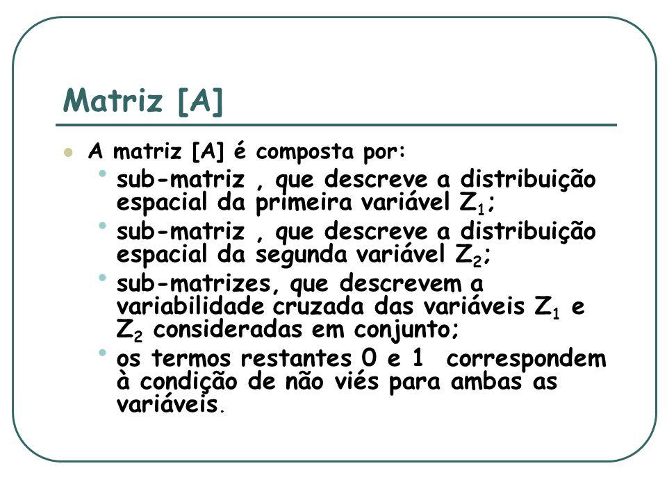 Matriz [A] A matriz [A] é composta por: sub-matriz , que descreve a distribuição espacial da primeira variável Z1;
